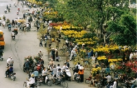 Tinh hoa Việt Trong Tết đồng bằng Bắc bộ
